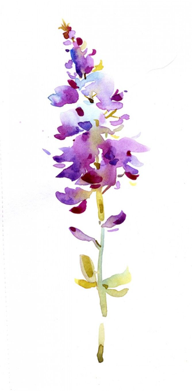 natalie graham watercolour flower