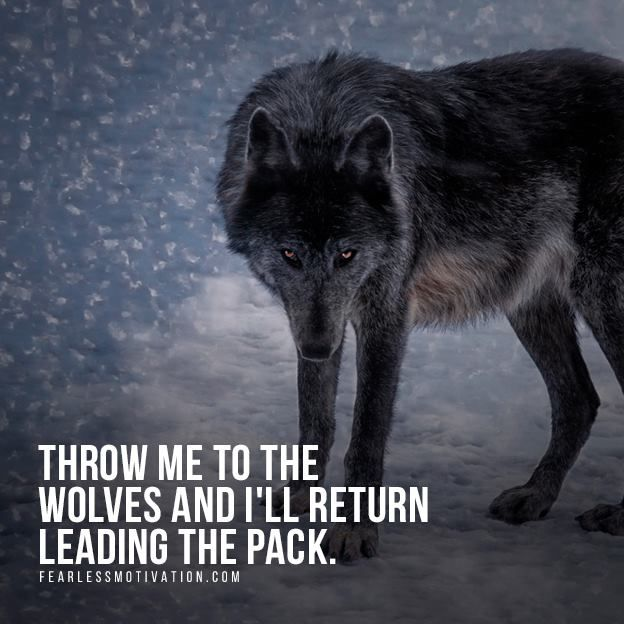 20 Strong Wolf Quotes To Pump You Up Wolf Quotes