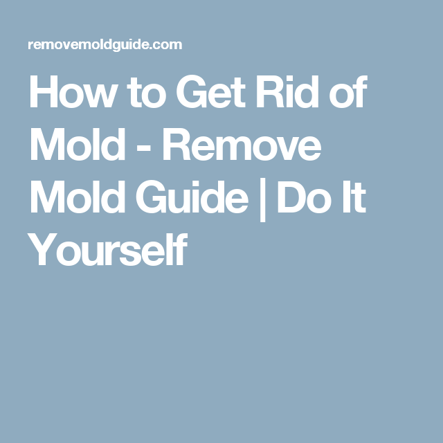How to get rid of mold remove mold guide do it yourself how to get rid of mold remove mold guide do it yourself solutioingenieria Image collections