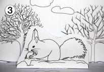 pop-up: das eichhörnchen im winter (sw) | eichhörnchen im