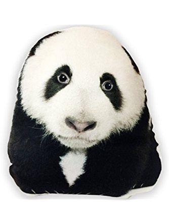 Pin On Panda Pandemonium
