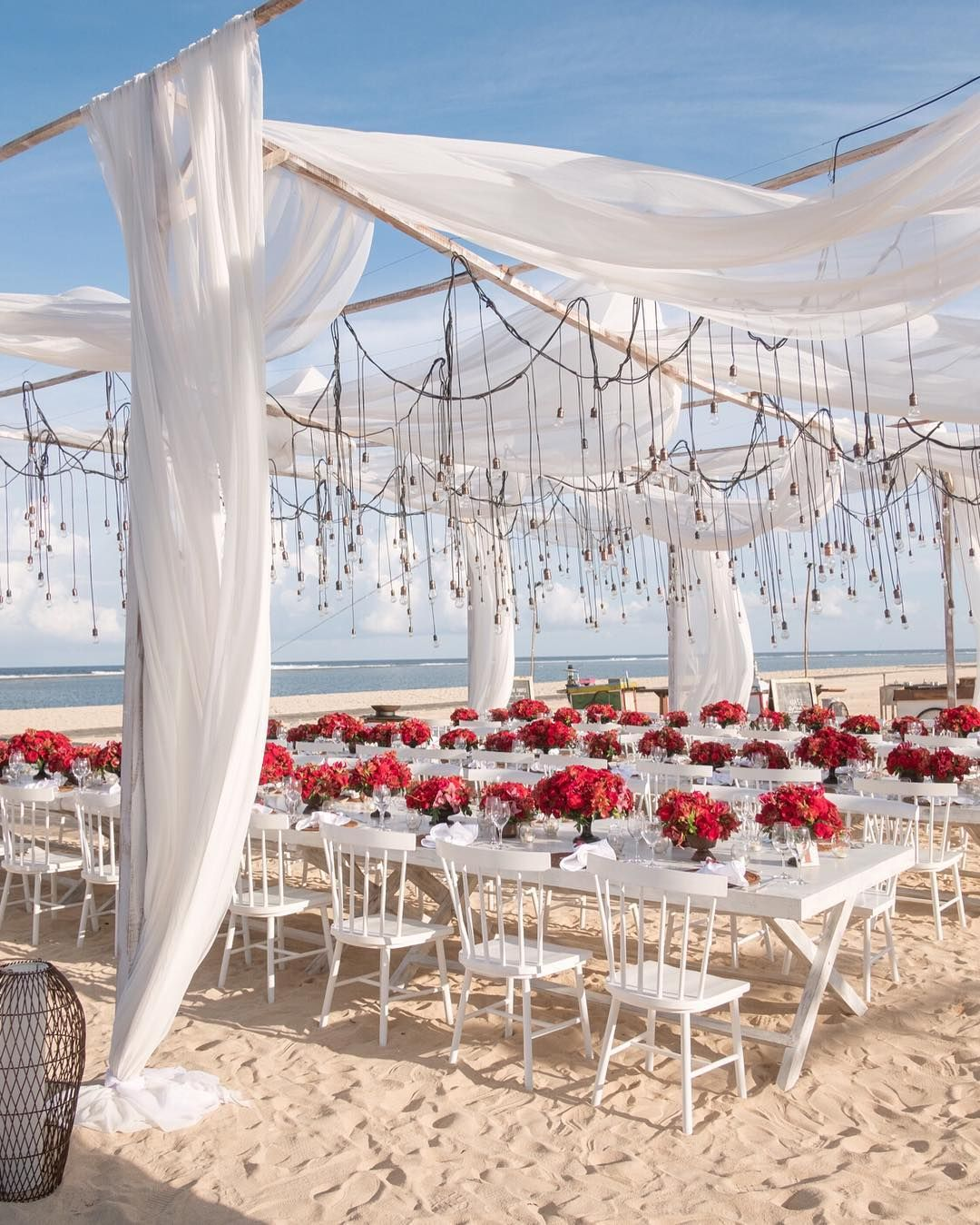 Drapes And Lights Red Flowers By The Beach With Images Beach