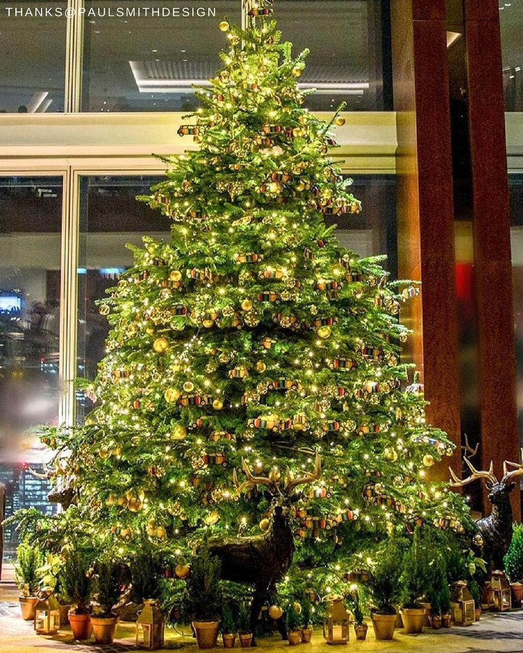 Because a fivestar Christmas simply requires a designer