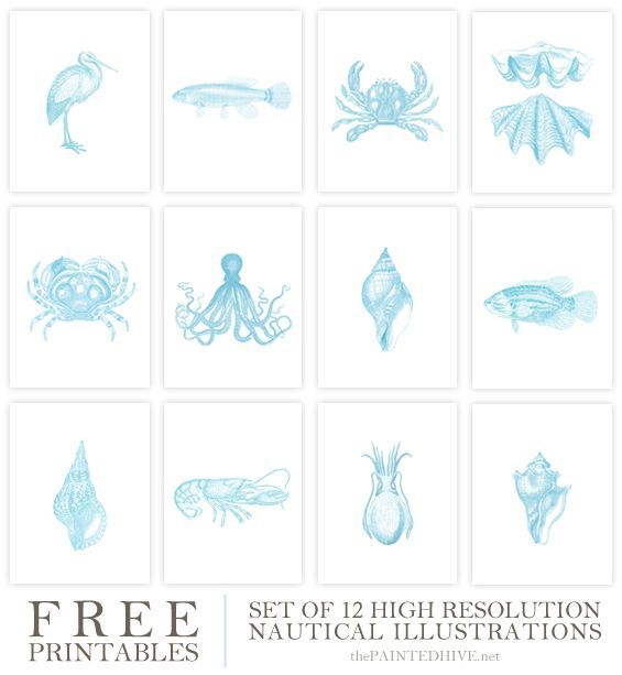 Free printable vintage coastal illustrations beach wall for Free wall painting designs
