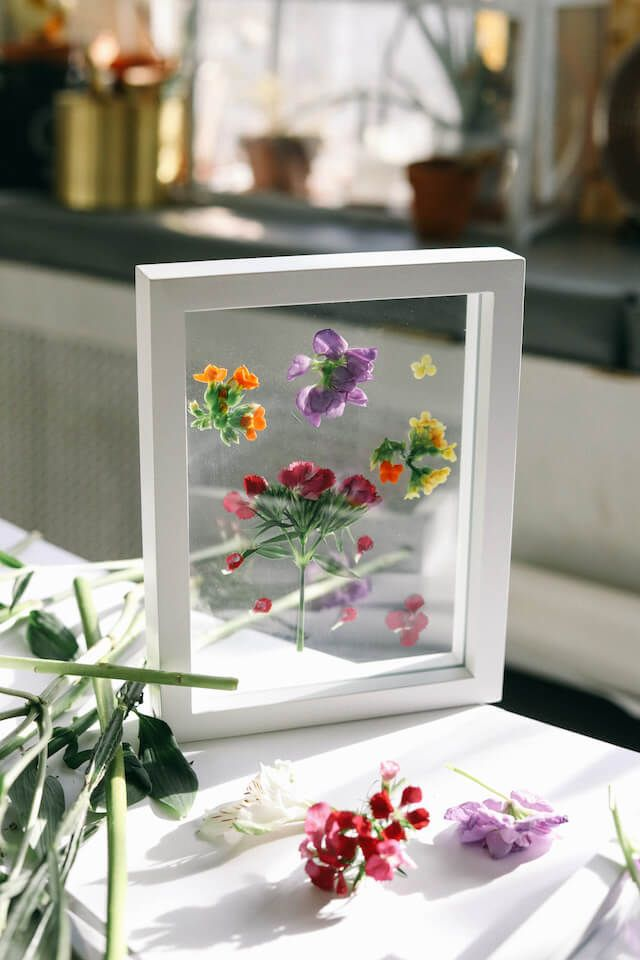 Photo of Glass Framed Pressed Fresh Flowers