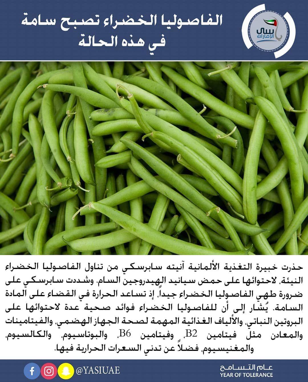 معلومات صحية الفاصوليا الخضراء تصبح سامة في هذه الحالة حذرت خبيرة التغذية الألمانية آنيته سابرسكي من تناول الفاصوليا الخضراء ال Green Beans Vegetables Beans