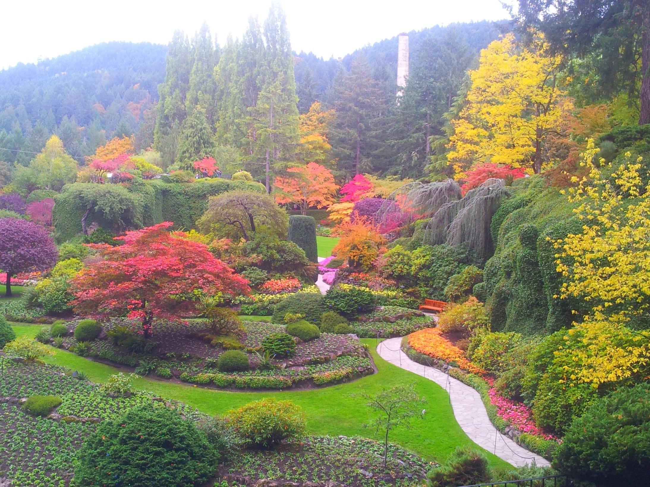 Fall colors at the butchart gardens with images