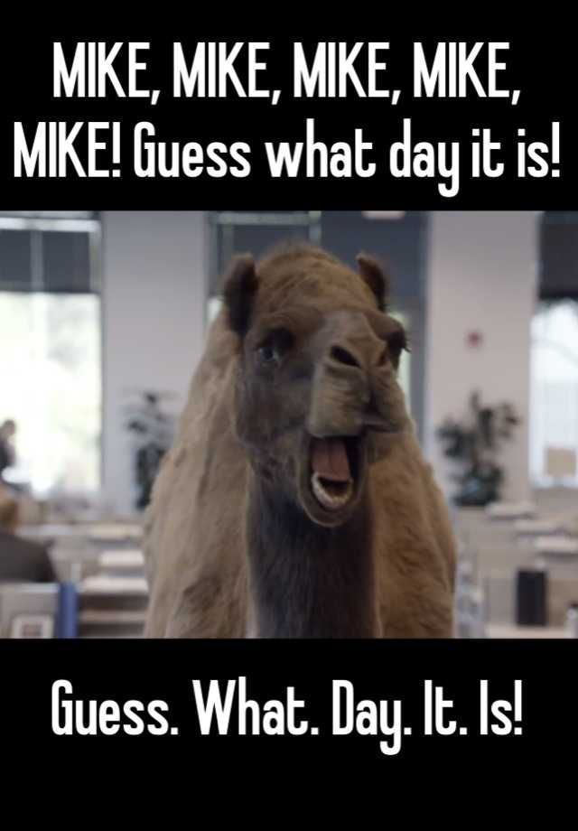MIKE, MIKE, MIKE, MIKE, MIKE! Guess what day it is! Guess. What ...