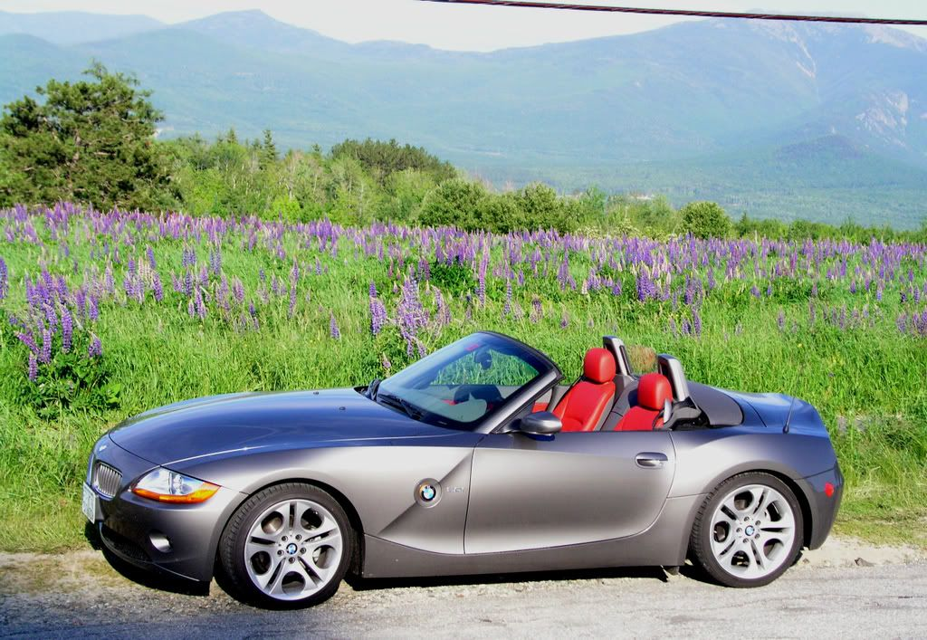 Bmw Z4 Grey With Red Interior Chevys And More Pinterest Red Interiors Chevy And Bmw Z4