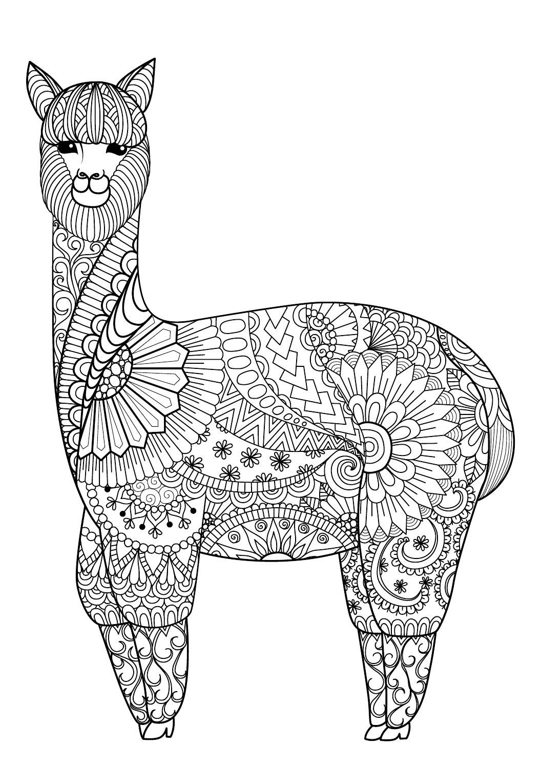 Colour Calm 10 Sampler Coloring Books Mandala Coloring Pages Animal Coloring Pages