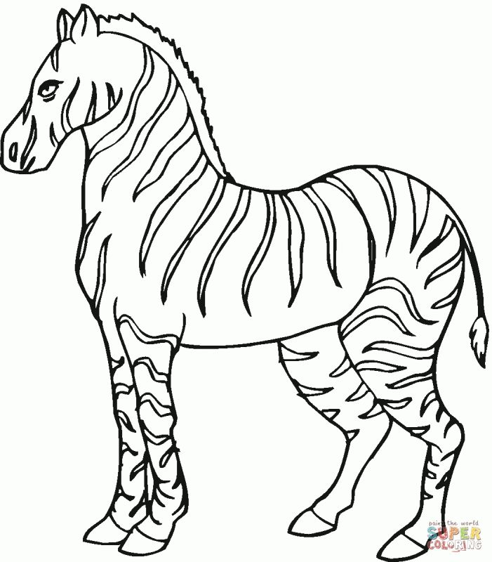 Zebra Coloring Page Zebra Coloring Pages Animal Templates Animal Coloring Pages
