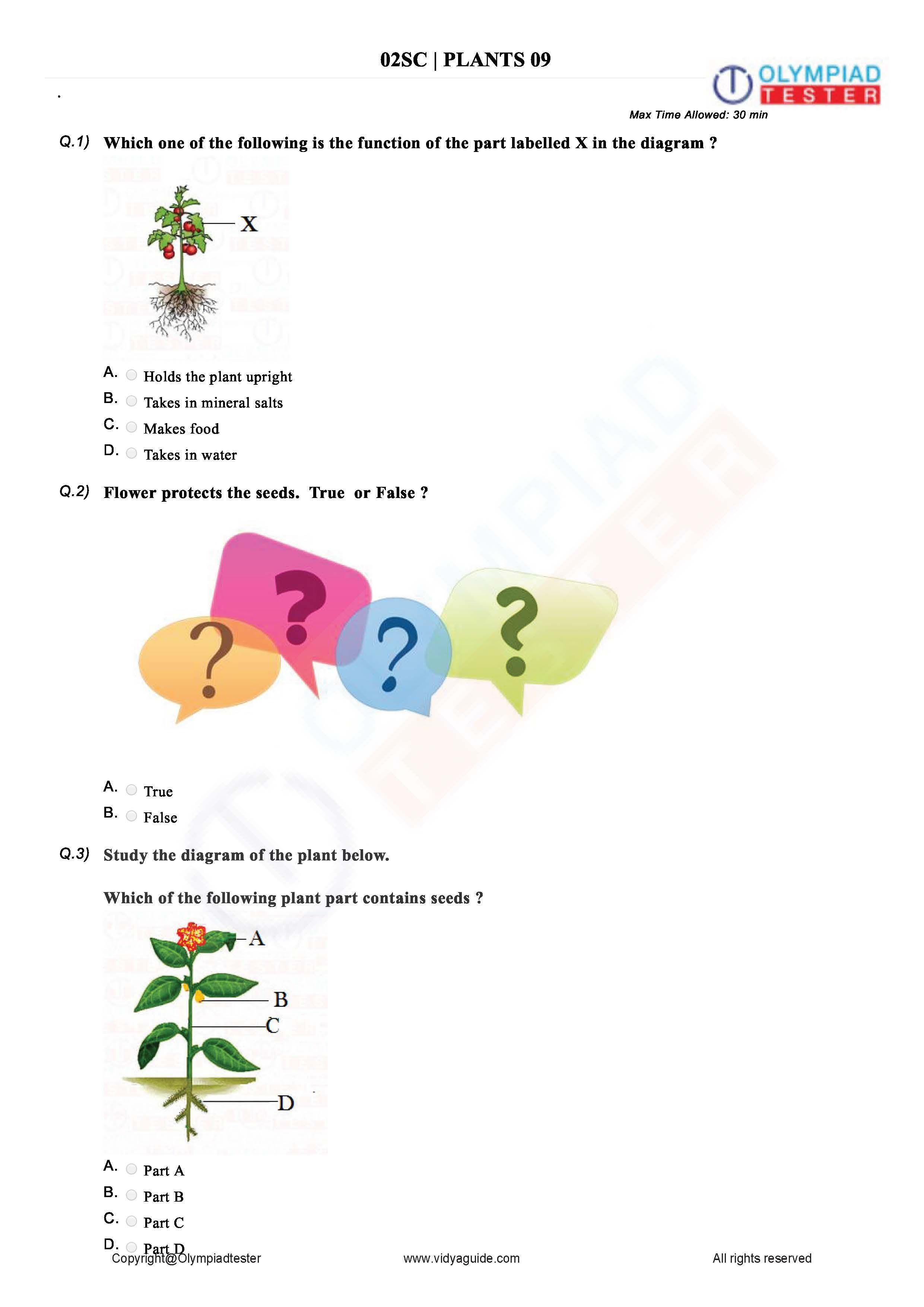 Pin On Best Grade 2 Olympiad Worksheets And Sample Papers