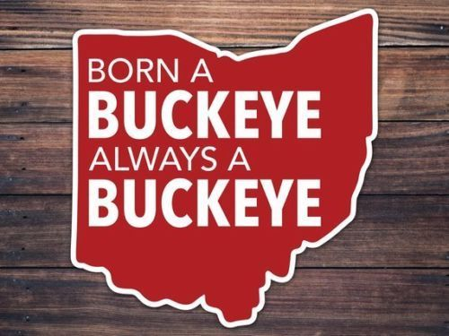 Ohio State Buckeyes Car Window Decal - Born a Buckeye Decal - OH Home Roots