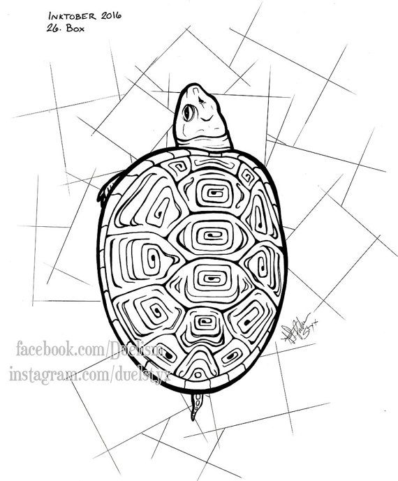 box turtle tattoo art original lineart unique design terrapene