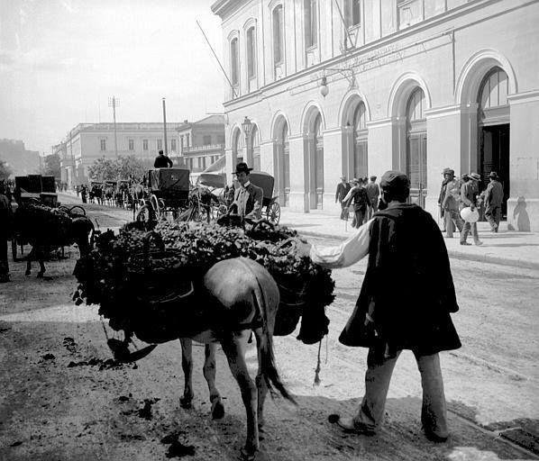 Our Athens......... Μια φωτογραφία για την Αθήνα: Επαγγέλματα της παλιάς Αθήνας. Αθήνα 1917 Η οδός Αθηνάς