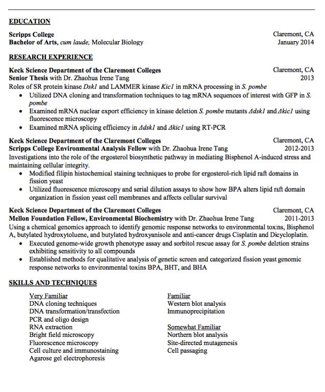 Curriculum vitae master39s thesis