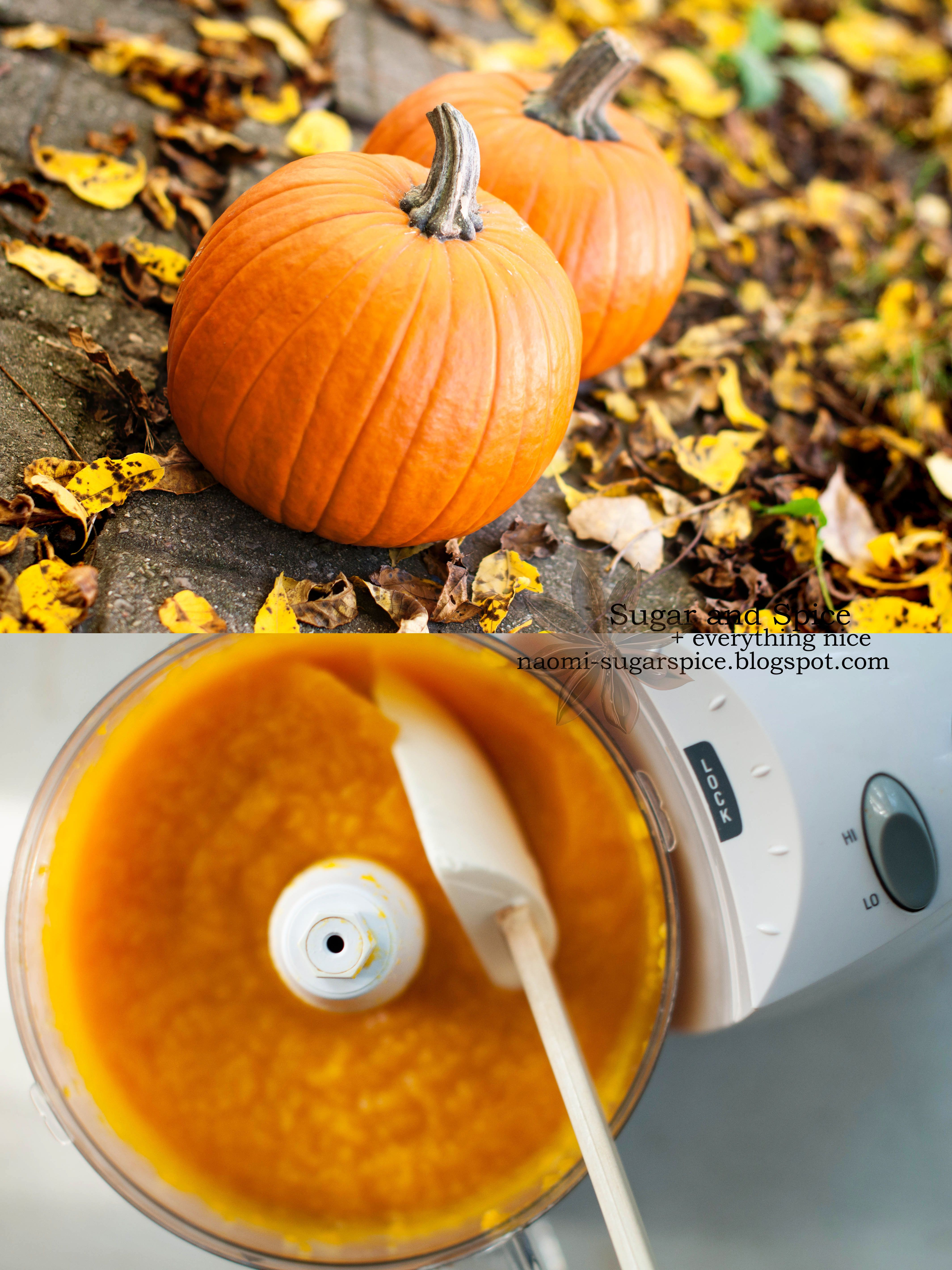 How To Make Your Own Pumpkin Puree Tutorial With Images