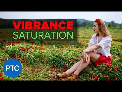 Difference between vibrance and saturation