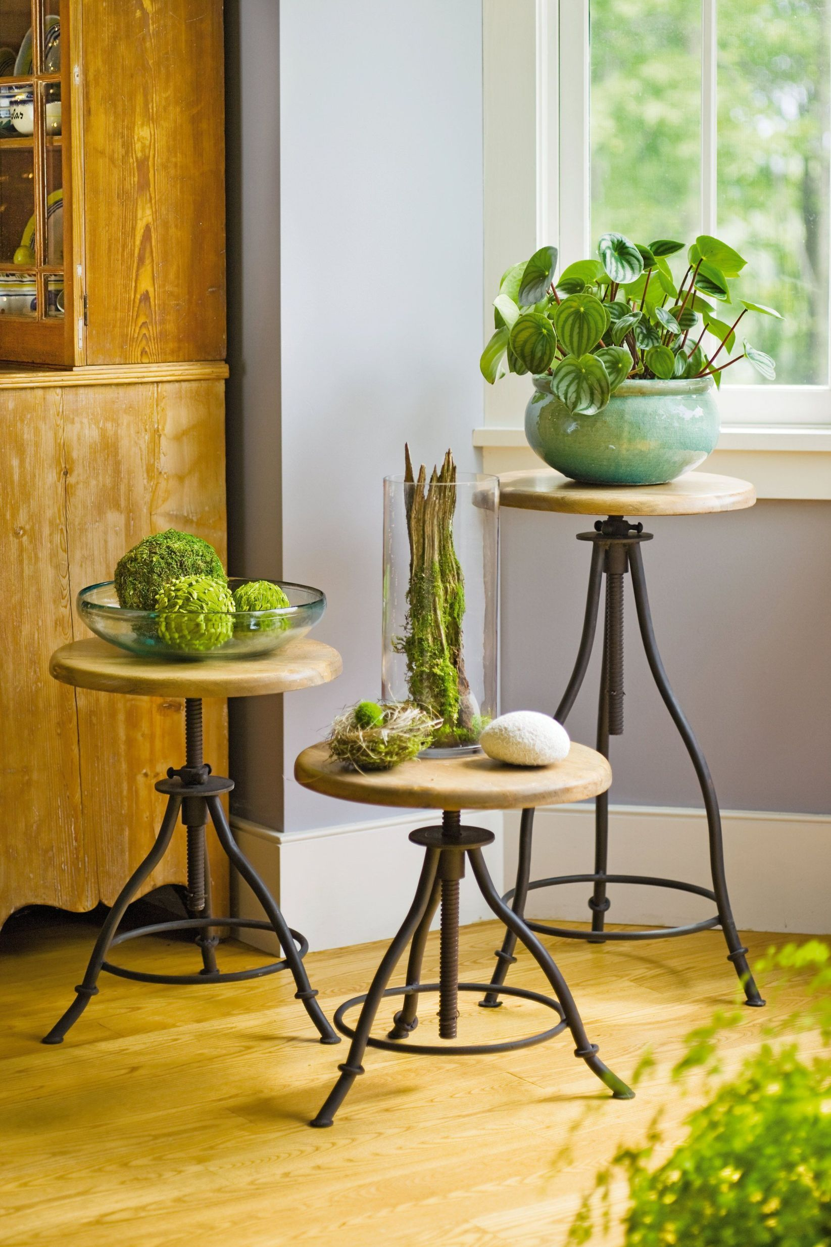 Amazing tall plant stand indoor #diyplantstandideas # ... on Amazing Plant Stand Ideas  id=60502