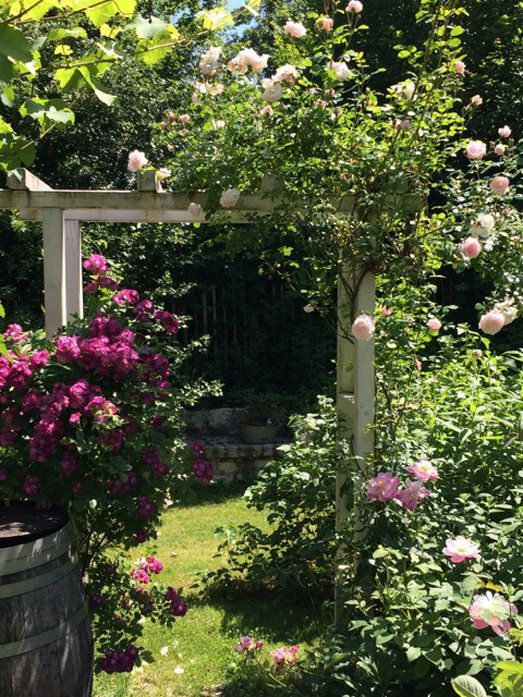 Mit diesen 10 Ideen verwandelst Du Deinen Garten in einen Cottage Gart   My Cottage Garden - Garten Blog #garden design plans