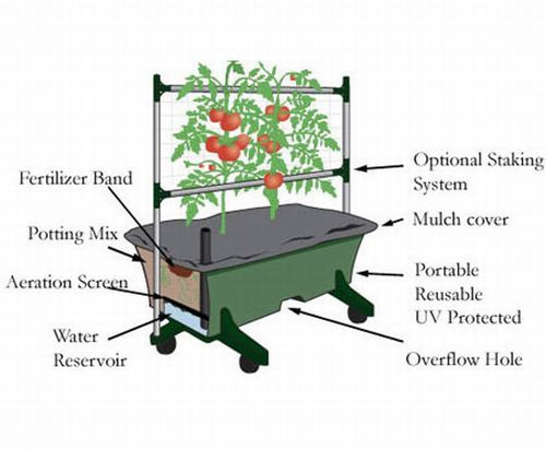 High Yield, Small Space – Container Gardening At It's Best