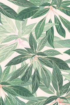 2020 Wallpaper Trends.Mint The Spring Summer 2020 Colour Trend Pattern Wallpaper