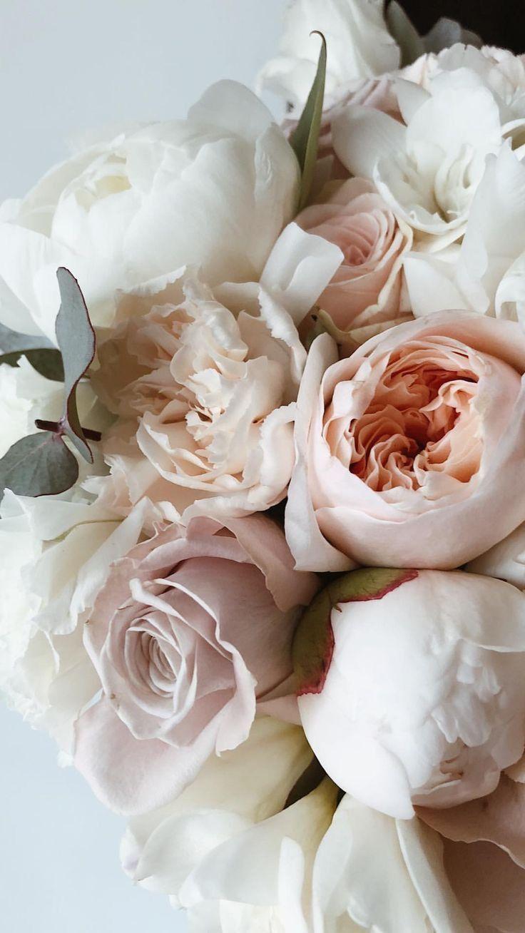 Обои на айфон Обои для телефона цветы пионы розы растения ...