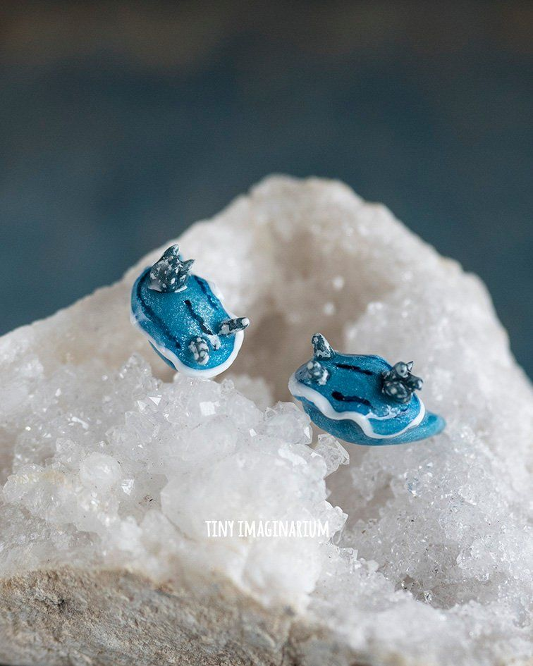 c5df76c4e Nudibranch sea slug earrings, blue slug earrings, stud earrings, marine  jewelry, chromodoris willani, marine biology, coral reef, ...