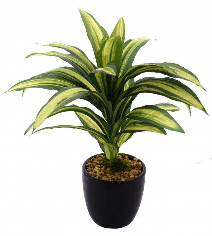 24 cm tall decorative artificial dracaena plant in a chic ceramic potgreen