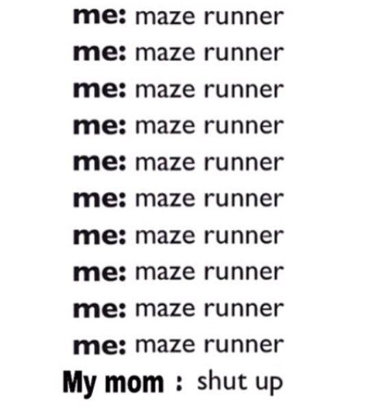 Maze Runner Maze Runner Maze Runner Maze Runner Maze Runner Maze Runner and the hunger games