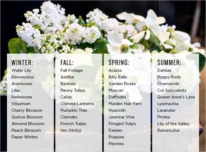 8482c4db3a Always know what flowers are in season with this guide from Stephanie  Schur