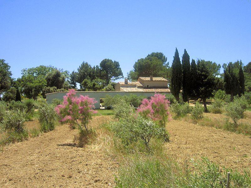 Bastide de charme dans le sud Luberon (Provence)