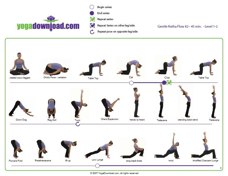 Gentle Hatha Flow Guide Yogadownload Com Basic Yoga Poses Basic Yoga Yoga Poses Chart