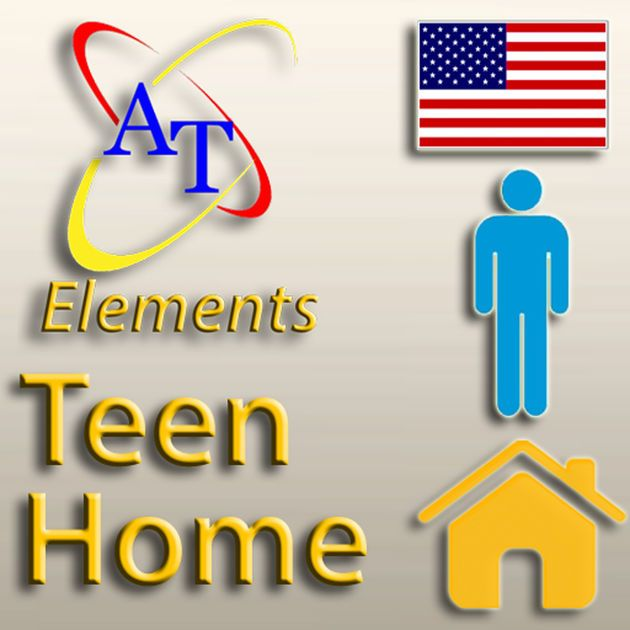 Alexicom Elements Teen Home (Male), Teen vocabulary with teen pictures to help teens communicate!
