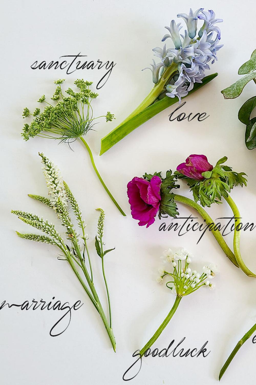 Flower Meanings Love In 2020 Flower Meanings Flower Arrangements Flowers