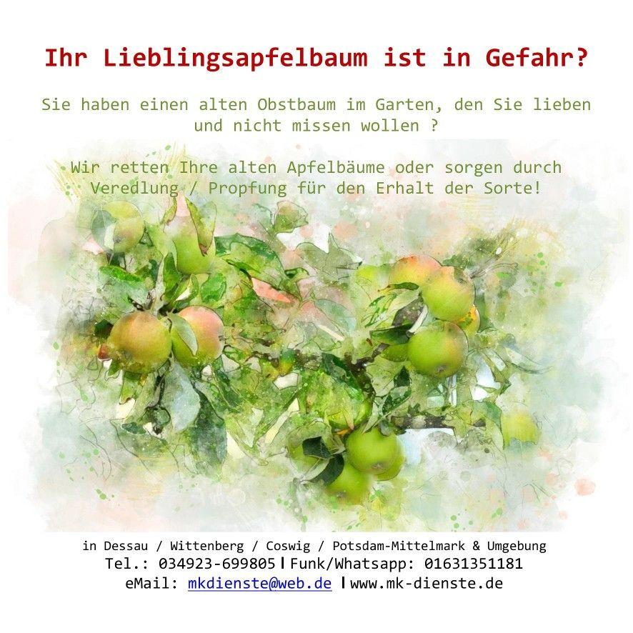 Pin Von Matthias Knauft Auf Natur Und Garten Apfelbaum Garten Apfel