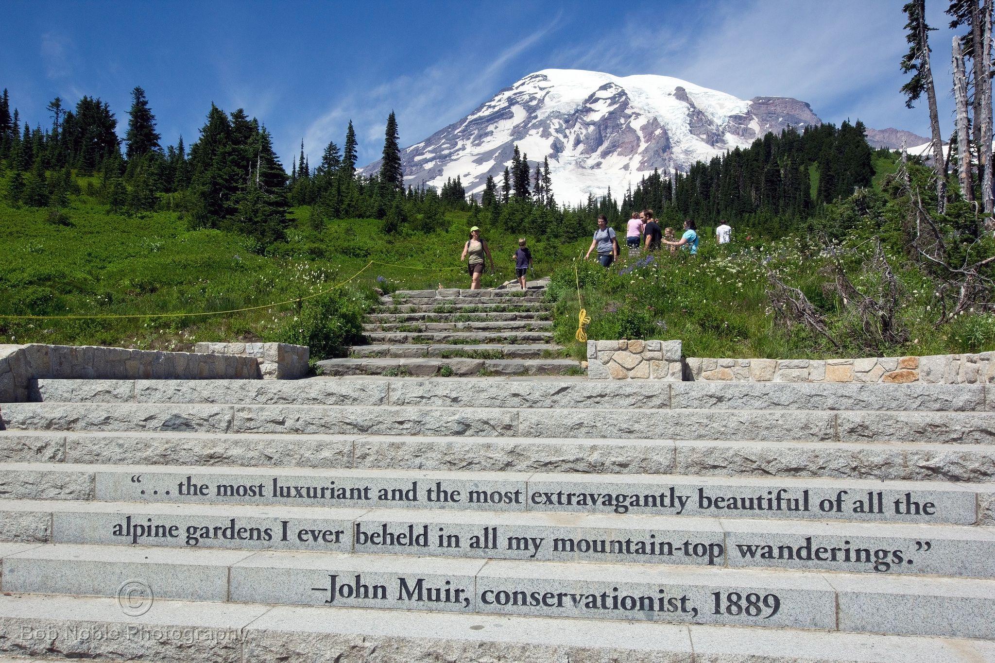 John Muir Quote At Paradise Mount Rainier National Park Seattle