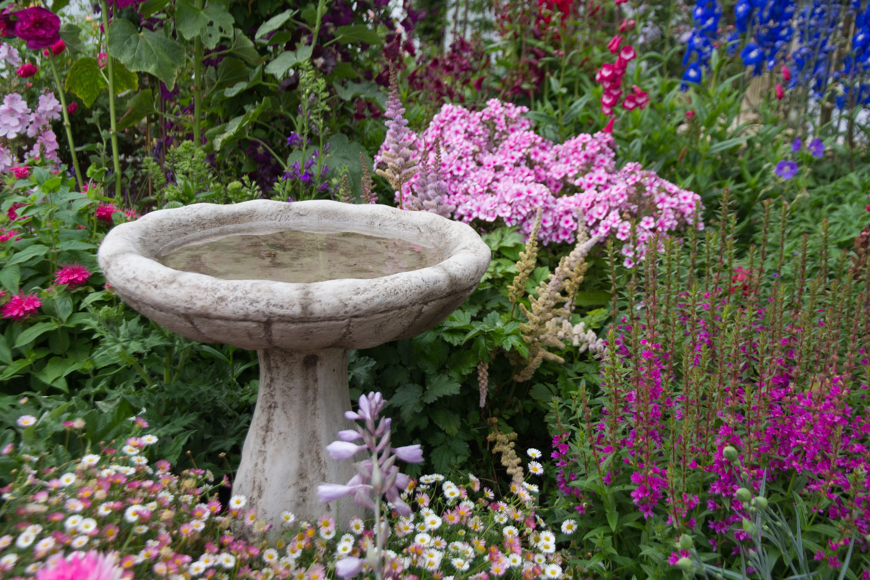 What Every Cottage Garden Needs Bees And Roses Concrete Bird Bath Bird Bath Garden Bird Bath