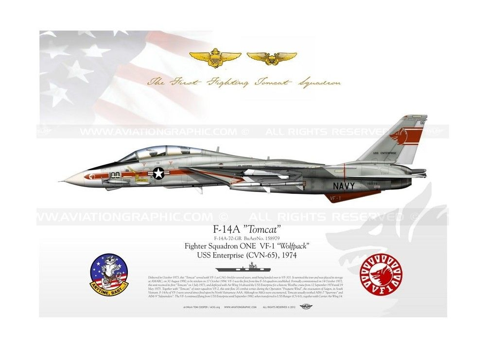 "F-14A ""Tomcat"" VF-1 ""Wolfpack"""