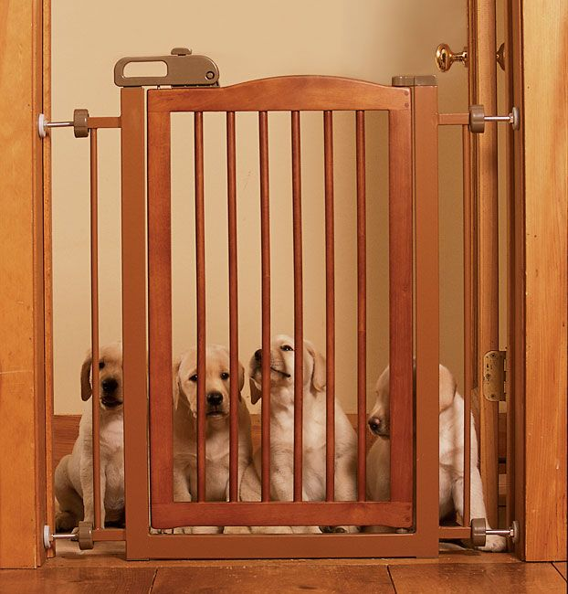 Exceptionnel Just Found This Dog Gates   Wood Door Frame Dog Gate    Orvis On Orvis.com!