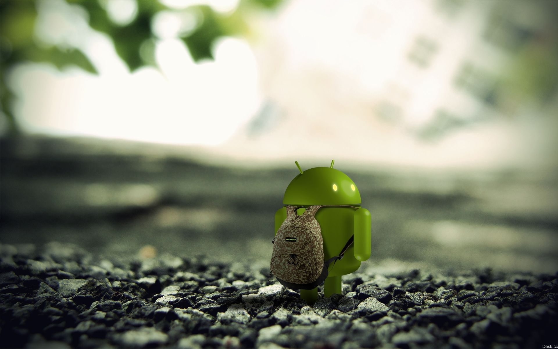 android wallpaper dŸd¾d¸ndo d² google