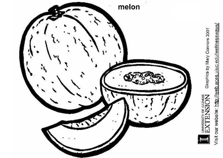 Coloring page melon, Coloring Page Template Printing