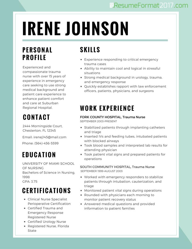 Image result for 2017 popular resume formats Best resume