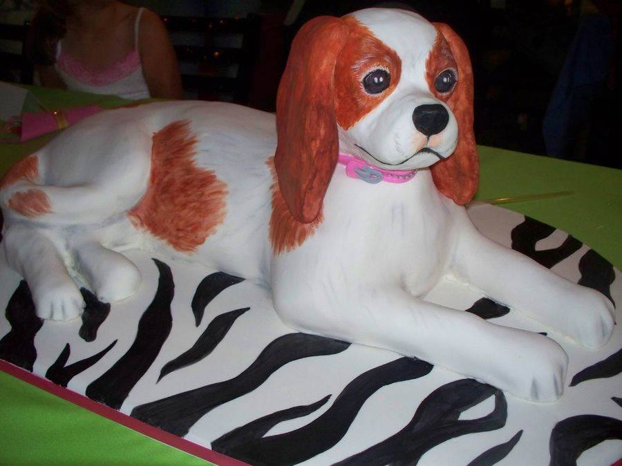 cavalier king charles spaniel cake cake for my daughters birthday