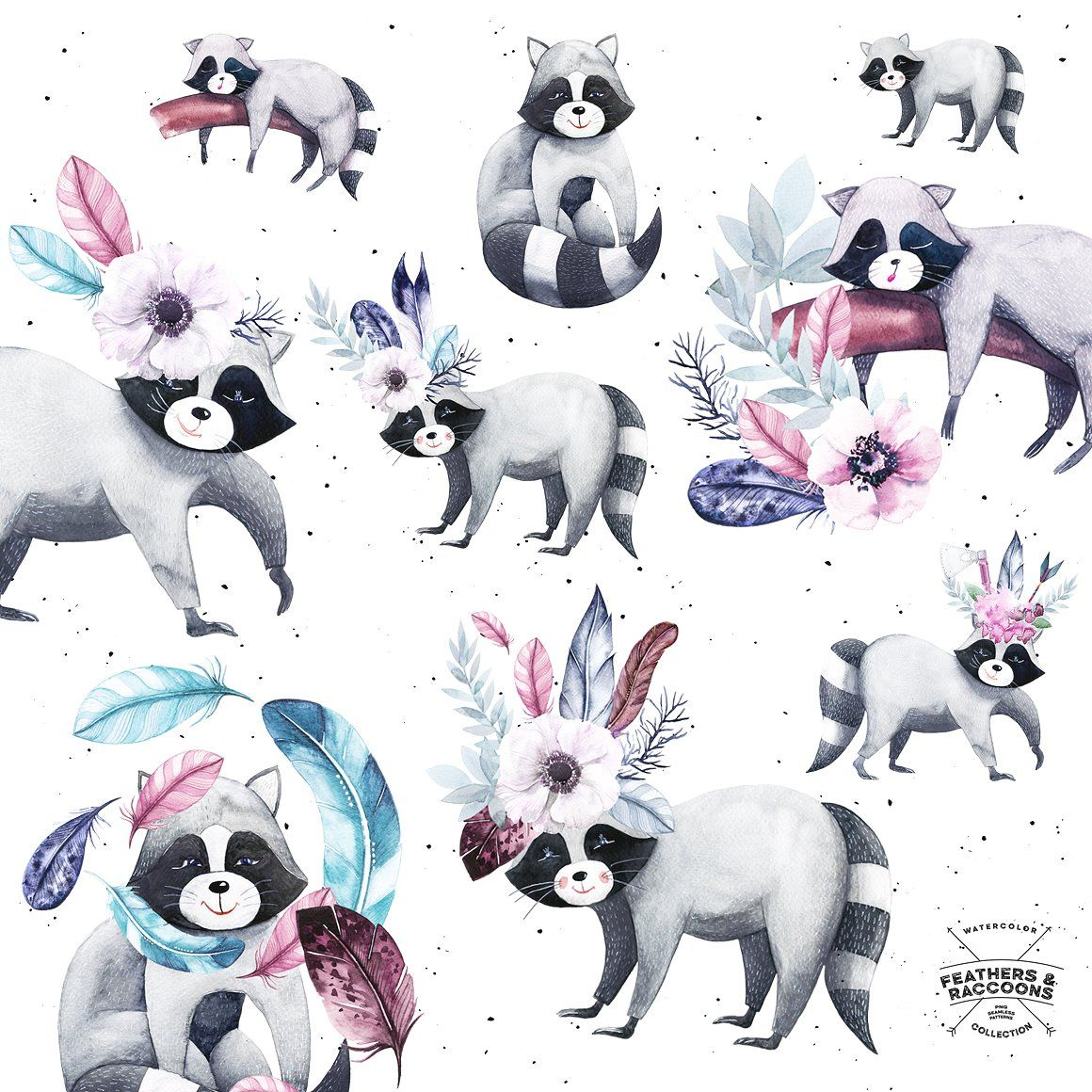 Watercolor Feathers & Raccoons by Spasibenko Art on @creativemarket