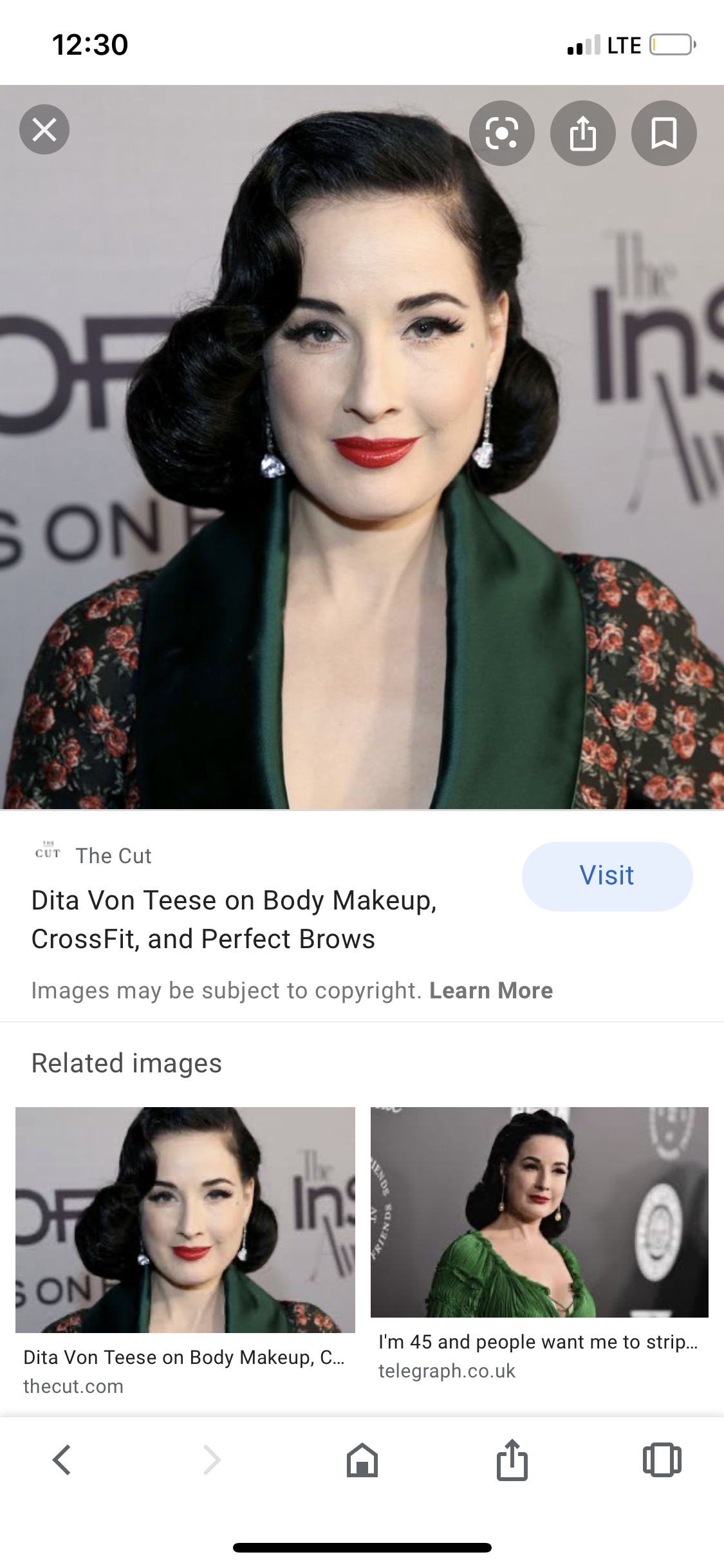 Pin By Njani Cecillia On Mad Hatter Perfect Brows Dita Von Teese Brows