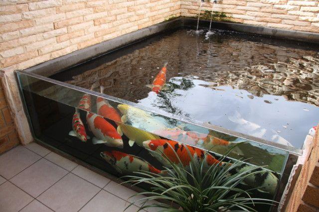 Glass Above Ground Fish Tank Kolam Ikan Kolam Taman Taman Air