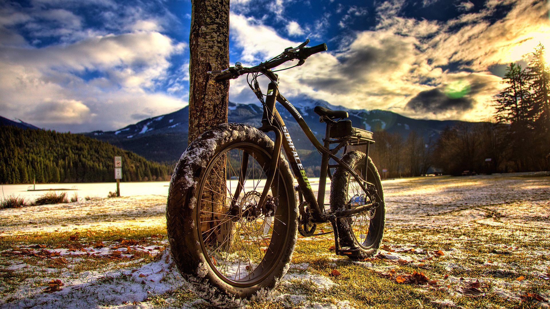Download Bicycle Wallpapers For Pc: Hdr Mountain Bike Wallpaper 1600x900 Wallpaper Bike