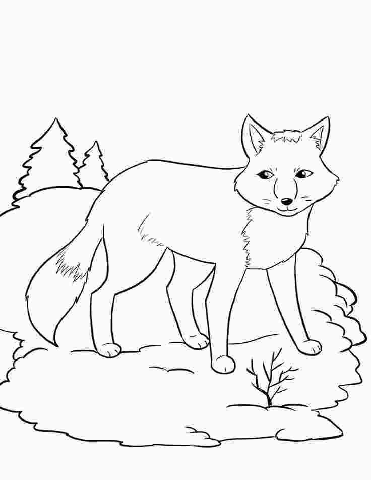 free printable coloring pages hibernating animals free