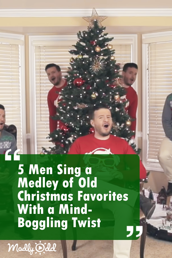 7 Men Sing 5 Acapella Christmas Songs With A Mind Boggling Twist Xmas Music Christmas Music Videos Holiday Music
